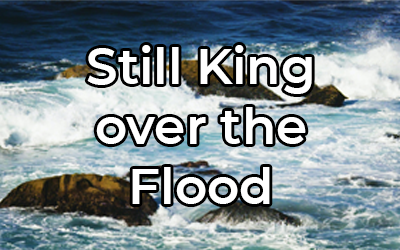 Still King over the Flood