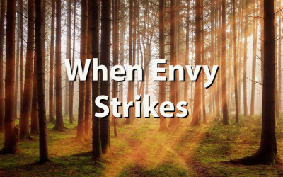 When Envy Strikes