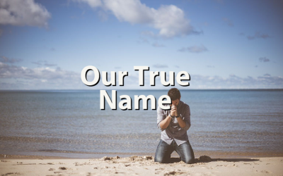 Our True Name